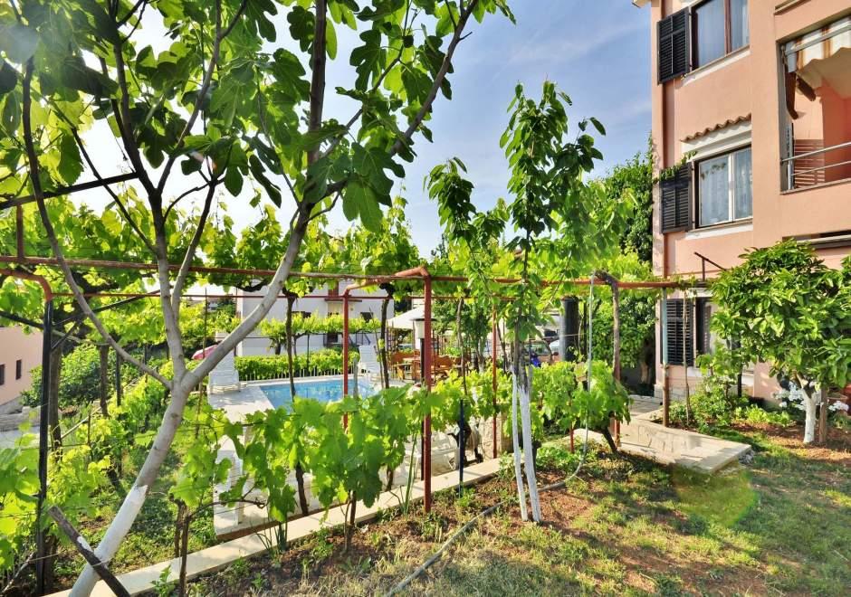 One bedroom apartment A1/Apartments Slavko