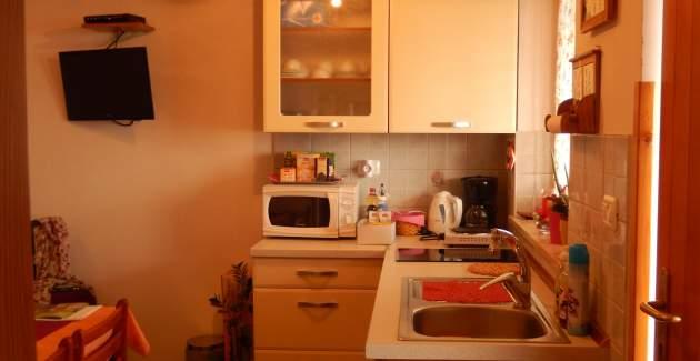 Apartment Sveti Leonard A1 - Oprtalj