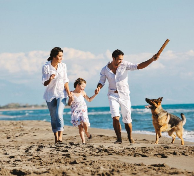Check our offer of apartments and holiday homes where pets are allowed