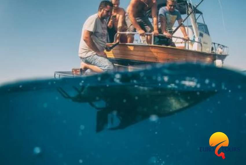 TunIstra - Offshore World Challenge
