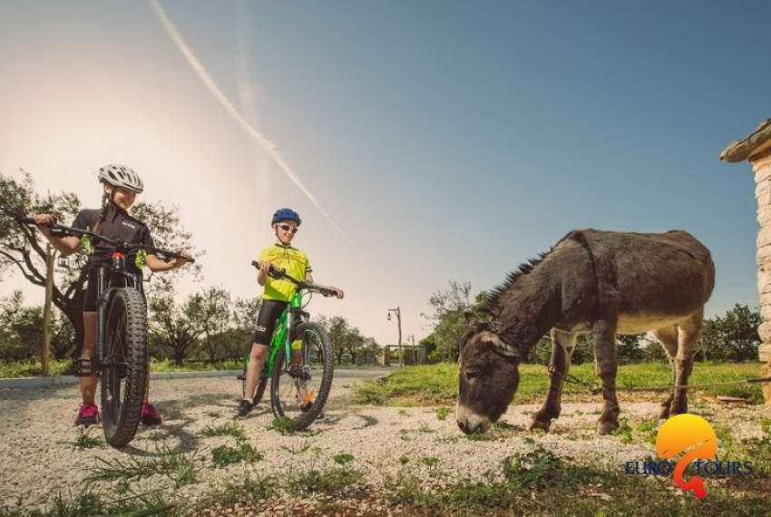 Recreational bicycle race Jakovlja
