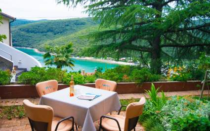 Ljerka A1 - Apartment with Terrace and Sea View - Rabac