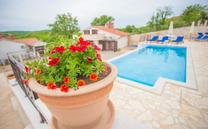 Beautiful Villa Lara in Central Istria